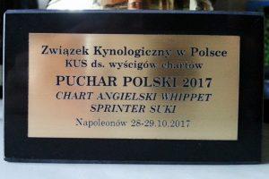 Puchar Polski 2017