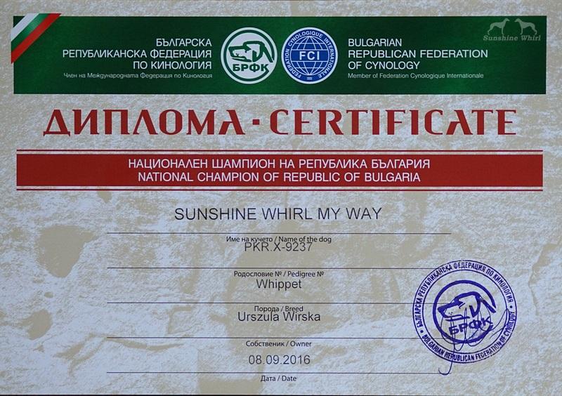 Dyplom - Champion Bulgarii