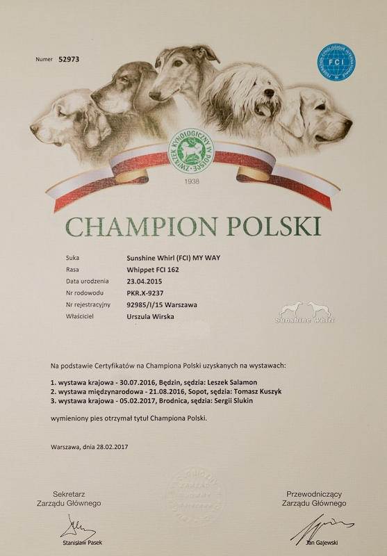 Dyplom - Champion Polski